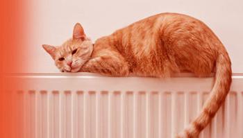 Radiateurs et chauffage électrique